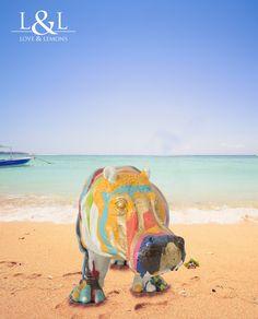 Hipopótamo diseño – loveandlemons #homedecor #deco #hipo #color #actionpainting #beach