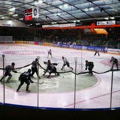Instagram photo by @visittrondheim via ink361.com Trondheim, Festivals, Hockey, Events, Sports, Instagram, Hs Sports, Field Hockey, Concerts