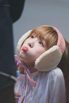 K-Pop Babe Pics – Photos of every single female singer in Korean Pop Music (K-Pop) Kpop Girl Groups, Kpop Girls, Class 2017, Mafia Game, Fandom, Baby Ducks, Japanese Girl Group, Kim Min, Female Singers