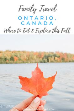 Family Day Trips in Ontario - where to eat & explore responsibly this Fall | Orangeville | King Township | Mono | Caledon | York Region | Best Ontario Parks | Conservation Areas | Family friendly Trails and Hikes | Foodie Family Tours