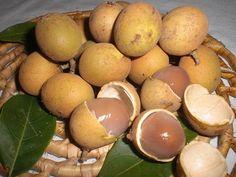 Pitomba = fruta