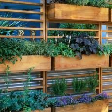 Vertical Herb Garden for a Small Space