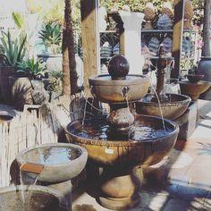 Hunting for new pottery. #plant #plants #plantsofinstagram #plantlove #plantlady #plantporn #plantgang #plantbabies #plantsmakemehappy #plantsmakepeoplehappy #houseplants #urbanjungle #growingthings #greenthumb #phytophilous #greenry #pottery #jackalopepottery #fountain #sproutandstem