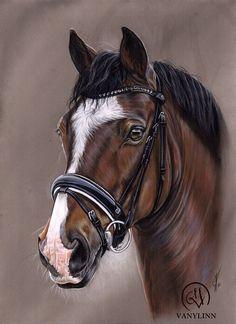 Horse Drawings, Realistic Drawings, Animal Drawings, Art Drawings, Horse Stencil, Horse Illustration, Horse Artwork, Animal Sketches, Equine Art