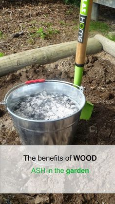 gardening the benefits of wood ash in the garden