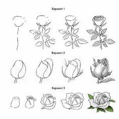 Как рисовать цветок карандашом. как рисовать цветок поэтапно-роза