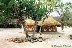 Photo of south african Shangaan-Tsongas hut.
