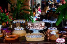 #Aniversario #decoração #Festa #Roça #Country #Fazenda  para orçamento 9965-0014