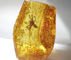 Inclusion spider fossil in Baltic amber by baltcoast