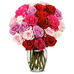 From You Flowers - 2 Dozen Roses in Red, Pink, Purple & White for Valentine's Day (Free Vase Included)