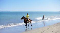 water boarding by horse back..lol
