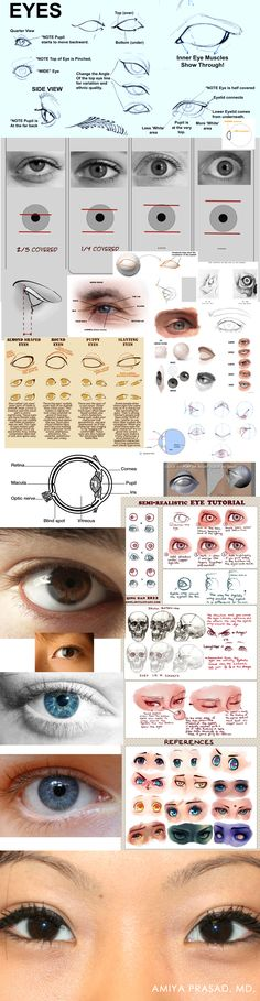 Eyes Reference compilation Drawing Tutorial