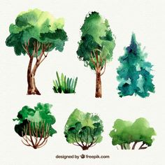More than a million free vectors, PSD, photos and free icons. Exclusive freebies and all graphic resources that you need for your projects Forest Illustration, Botanical Illustration, Watercolor Illustration, Watercolor Trees, Watercolor Landscape, Watercolor Paintings, Easy Canvas Art, Urban Sketching, Art Deco Design