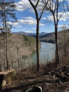 2146 Best Appalachia images in 2019   Country roads, The other side