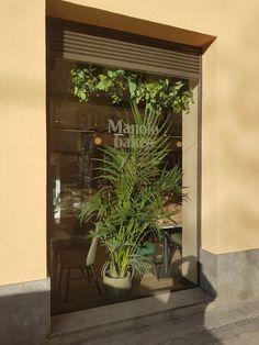Plants, Home, Plant, Planets