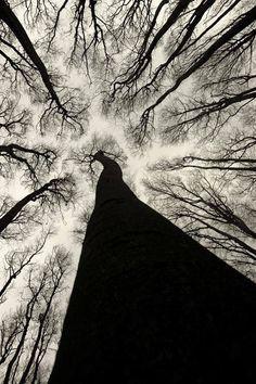 a_a — mirrormaskcamera: hauntedbystorytelling: ...