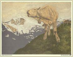 Druck und Verlag - K.K. Hof-und Staatsdruckerei Wien - Neuzugang eigene Sammlung 2021 Moose Art, Animals, Print Store, Art Nouveau, School, House, Kunst, Animales, Animaux