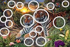 """Coba Hitung, Ada Berapa Harimau Di Gambar Ini? Kamu Pasti Gak Bisa Lihat """"Harimau yang Terakhir"""" Ada Dimana! - Cerpen Images, Table Settings, Photos, Tour, Voici, Drink, Tigers, Brain Teasers, Pictures"""