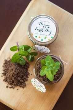 "Potted Chocolate-Mint Puddings with Cookie Crumble ""Dirt"" - Evermin..."