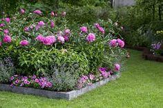 kaunis puutarha - Google-haku