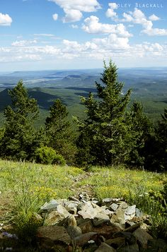 Must be from Glorieta Baldy, a great day hike.                                              Glorieta, New Mexico by ColeyBlackall, via Flickr