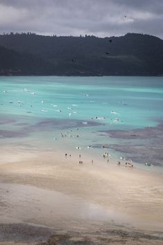 Low tide action off Catseye beach on Hamilton Island, Whitsundays  #thisisqueensland photo @youngadventures