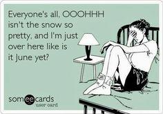 Junk Chic Cottage: Freezing is an Understatement!