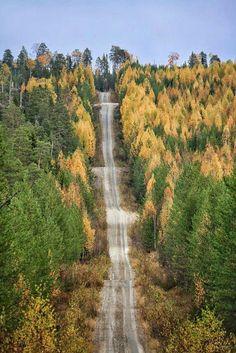 Finland, Kuhmo, Hukkajärvi, Vasamantie on October 2014. Copyright, protografer Virve Lampinen.