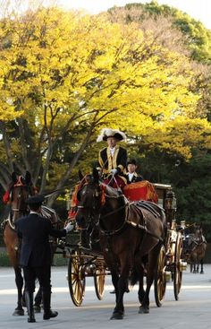 Horse-drawn carriage for the new U.S. Ambassador to Japan Caroline Kennedy for her courtesy call to the Imperial Palace, Tokyo (Nov. 19, 2013)