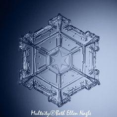 Snowflakes, snowflake, star snowflake,  hexagon, micro photography, snowflake art print macro photography