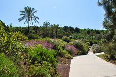 Garden Botanic