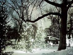"""E restiamo in tema natalizio con un'altra poesia. Questa volta di padre Turoldo  """"Ma quando facevo il pastore allora ero certo del tuo Natale. I campi bianchi di brina, i campi rotti dal gracidio dei corvi nel mio Friuli sotto la montagna, erano il giusto spazio alla calata delle genti favolose. [...]  #davidmariaturoldo, #natale, #poesia, #italiano,"""