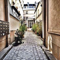 Le charme de l'arrière-cour parisienne.
