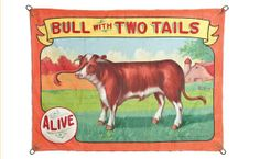 """229: Carnival Sideshow Banner """"Bull with Two Tails"""" : Lot 229"""
