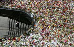 A man arrives with a bunch of flowers in Martin Place in Sydney, Australia. Tens of thousands of Sydneysiders have paid tribute to the two victims of the Martin Place siege, barrister Katrina Dawson and cafe manager Tori Johnson.