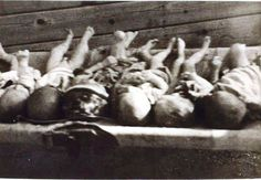 bodies of young children piled up at Jasenovac.