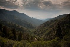 Great Smoky Mountains - Tennessee 2 by tony.eckersley, via Flickr