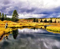 mlbo.com | Yellowstone National Park