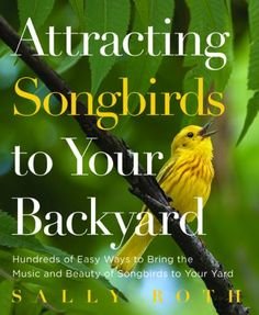 Author Sally Roth gives you the best ways to attract melodic birds, with insight into their rapidly changing habits.