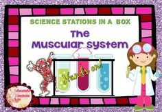Hands on! The Muscular System Lab  (Science Stations in  a box)