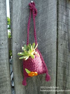 Crocheted Plant Holder.  Such a cute idea!  Taken at Fellows Riverside Gardens, Youngstown, OH.