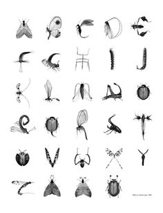 ABC Bugs :-) PLAZA Interiör | Inredning, Design, Hem, Kök, & Bad |