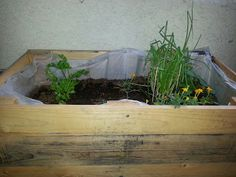 Katie's Pantry Partners: How to Build a Pallet Gardening Box