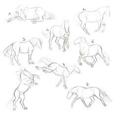 YHH Auction CLOSED by dat-inu.deviantar on beautif. - YHH Auction CLOSED by dat-inu.deviantar on beautiful cutest - Animation Reference, Art Reference Poses, Drawing Reference, Horse Drawings, Animal Drawings, Cool Drawings, Drawing Poses, Drawing Sketches, Horse Drawing Tutorial