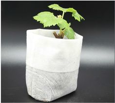Cheap bag rack, Buy Quality bag atmosphere directly from China supply technology Suppliers: Non-woven bags nursery, seedlings bags, planting bags, nutrition bag, factory customized direct marketing, quality assur