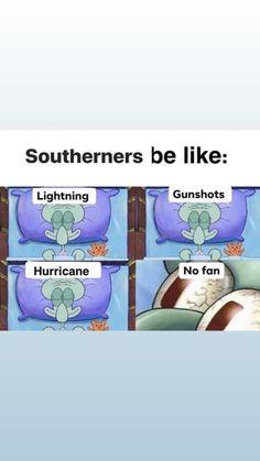 Wtf Funny, Funny Memes, Jokes, Hurricane Memes, Southern Girls, All Things New, Spongebob Memes, Down South, Grumpy Cat