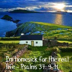 """When we are living on a paradise earth in complete health, peace, and happiness, we will at last enjoy """"the real life""""—everlasting life. (1 Timothy 6:12) JW.ORG"""