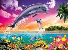 dolphins with rainbows - Google Search