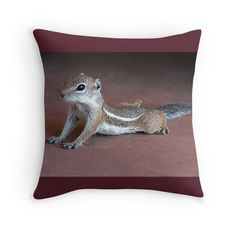 """""""Yoga Chipmunk"""" Just Featured in RB Group:  """"Pick Of The Day"""""""