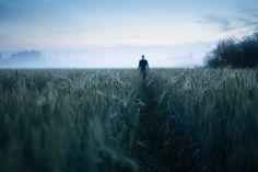 Atmosferik Perspektif ile Finlandiya Manzaraları #atmosferikperspektif #fotografcilik #fotograf #photography #finland #finlandiyamanzaralari #finlandlandscapes #MikkoLagerstedt #sanat #art #artmanik